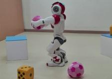 Robotlara çervesini öğretmek