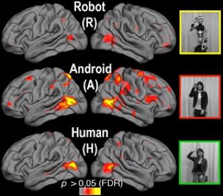 Robot – insansi robot algilanmasi